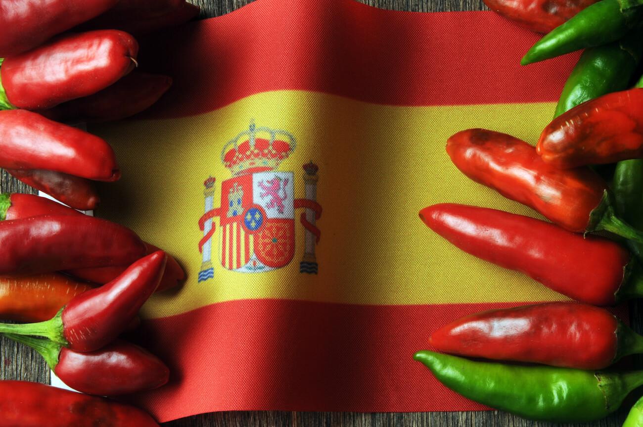 Trova traduttore spagnolo traduzione spagna